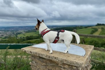 JRT and countryside